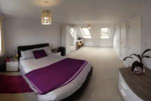 Dormer loft conversion 1 bedroom